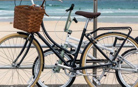 activity Sydney à vélo !