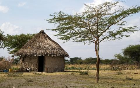 activity Village Museum à Dar es Salaam
