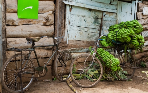 activity Visite du village de Mto Wa Mbu