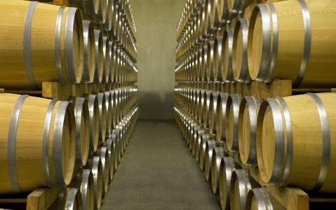 activity Visite d'une cave et dégustation des vins
