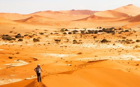 activity Ascension d'une dune de Sossusvlei