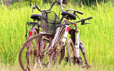 activity Balade à vélo à Yen Bai