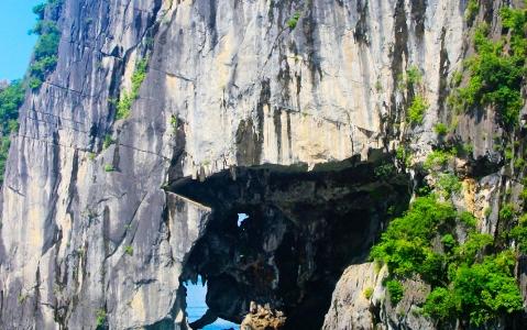 activity Croisière et grottes de Trang An