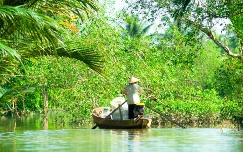 activity Croisière sur la lagune de Dam Chuon