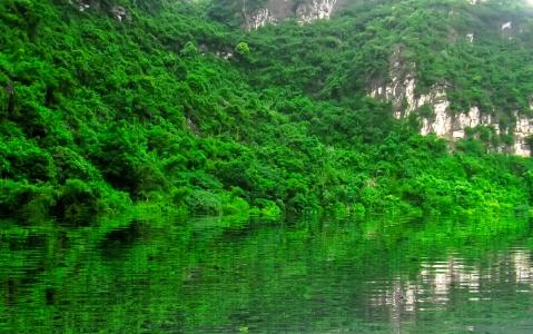 activity Croisière sur la rivière des parfums