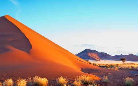 activity Excursion dans la réserve de Namib Rand