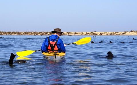 activity Kayak des mers