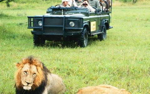activity Un safari dans la réserve de Muhango