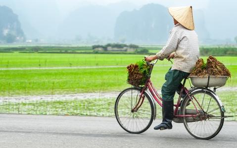 activity Vélo jusqu'à Luong Son