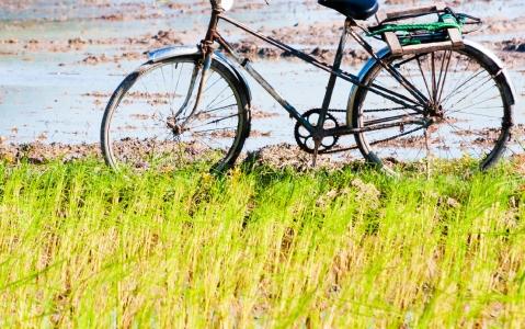 activity  Vélo le long de la rivière des parfums