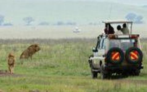 activity Un safari en 4x4 avec le Likweti Lodge & Sanctuary