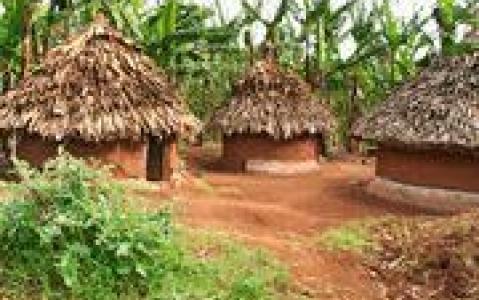 activity Visite d'un village Himba