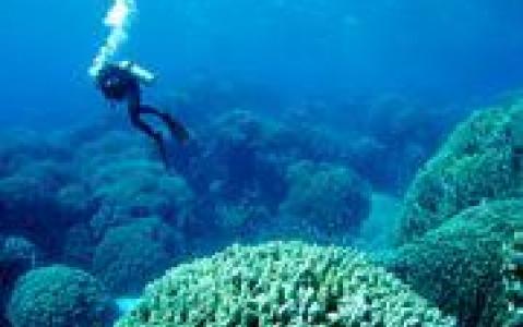 activity Les activités nautiques (non motorisées) au Mozambique