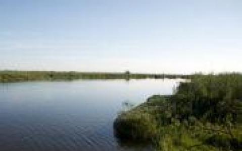 activity Excursion en mokoro sur l'Okavango