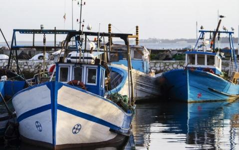 activity Pêche au gros sur l'ile de Sal
