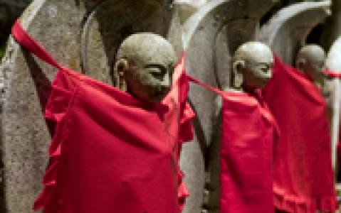 activity Nuit dans un monastère au Mont Koya