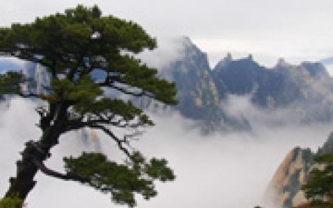 activity Randonnée sur les Monts Hua Shan