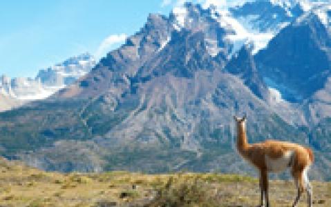 activity Trekking dans le parc de Torres del Paine