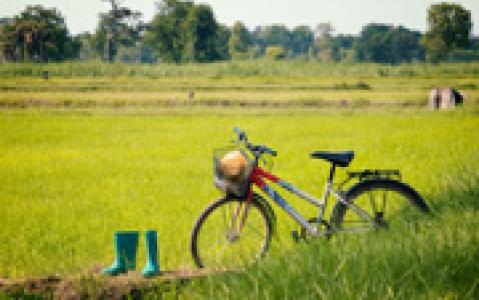 activity Vélo à Kontoku
