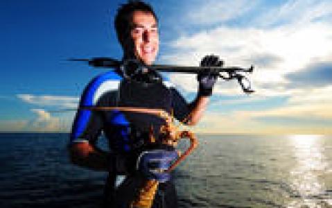 activity A la pêche !