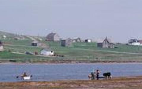 activity Croisière vers la Grosse Île