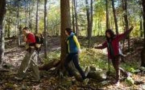 activity Cartes de randonnées