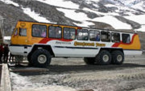 activity Bus des neiges sur le glacier Columbia Icefield