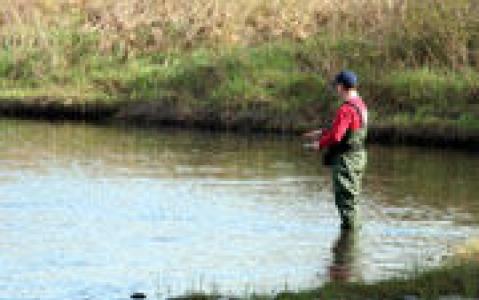 activity Pêche à la truite à la mouche