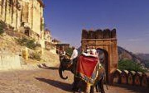 activity Balade à dos d'éléphant (à Dera Amer, à 30 min de Jaipur)