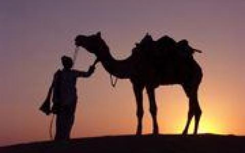activity Découverte de Jaisalmer en 4X4 et à dos de chameau