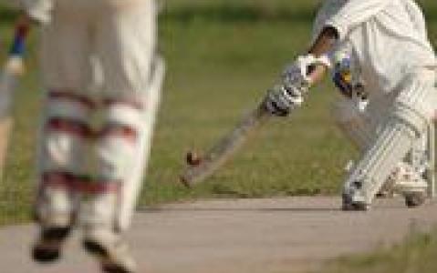 activity Match de cricket dans un village