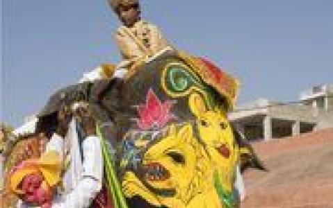 activity Promenade à dos d'éléphant