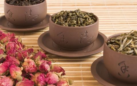 activity Visite d'une plantation de thé et de son usine + dégustation