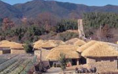 activity Visite de la ferme écologique Chiiori