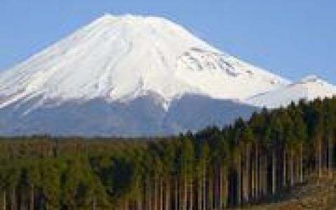 activity Le Mont Fuji