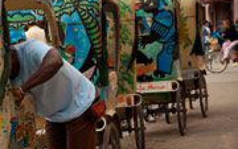 activity Visite de Tamatave en pousse-pousse