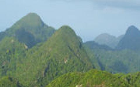 activity Ascension du Mont Tambuyukon