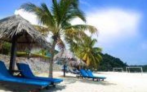 activity Excursion en bateau sur l'île de Pulau Dayang Bunting