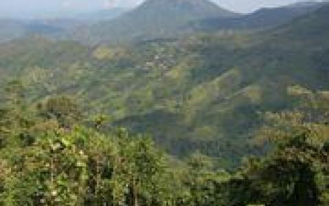 activity Ascension du Mont Trusmadi