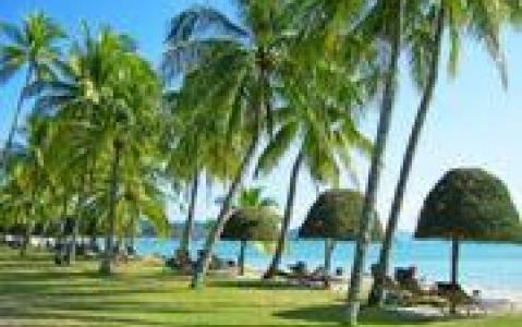 activity Excursion à Coral Island
