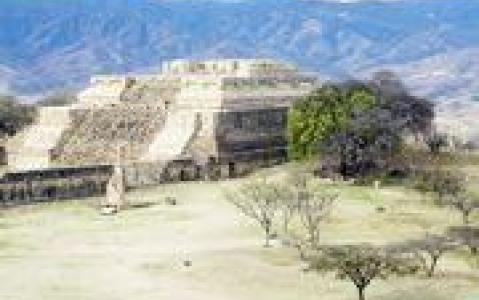 activity Monte Alban, l'un des berceaux de la civilisation Zapoteque