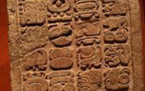 activity Tour de ville de Mexico et visite du musée d'anthropologie