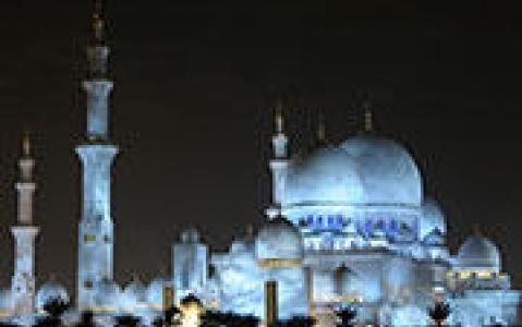 activity La Mosquée Sheikh Zayed et l'Hôpital des faucons