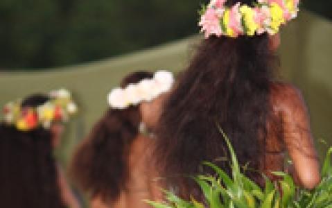 activity Dîner spectacle au Tiki Village