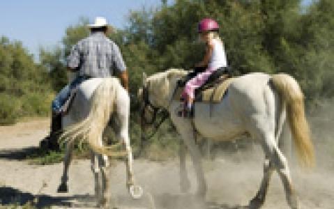 activity Cheval à Cusco