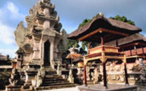 activity Le traditionnel Ubud