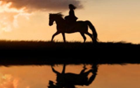 activity Balade à cheval au coucher du soleil - Swakopmund