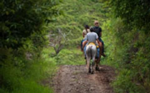 activity Balade à cheval vers la chute d'eau de la Fortuna