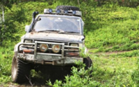 activity La forêt de Tijuca en Jeep