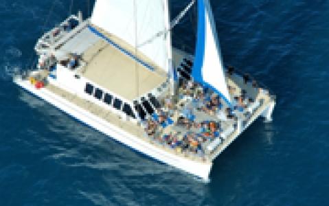 activity Journée de croisière sur la grande barrière de corail à Cairns